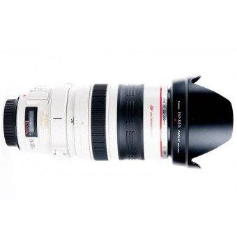 Canon 28-300 mm f/3,5-5,6 L IS USM - Objectif Photo Téléobjectif